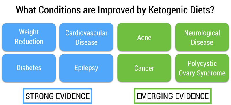The Ketogenic Diet. Is it Paleo? image