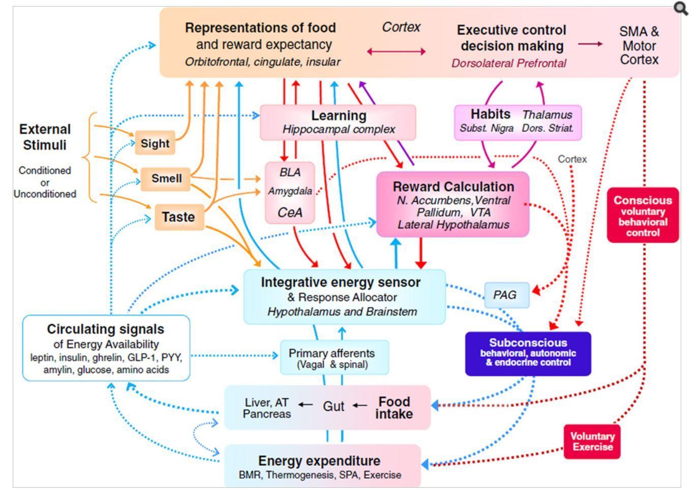 Addiction Chart 3