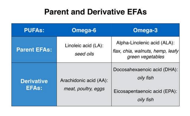 Multigenerational Vegetarians | Cancer and Heart Disease