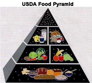 https://thepaleodiet-assets.s3.amazonaws.com/images/USDA_food_pyramid.jpg?mtime=20200122110757&focal=none