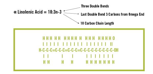 Polyunsaturated Fatty Acids image