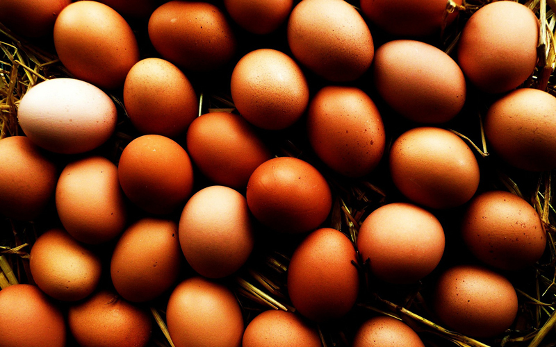 What About Eggs? | The Paleo Diet