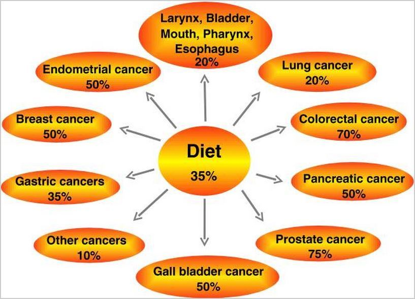 https://thepaleodiet-assets.s3.amazonaws.com/images/anti-aging-11.jpg?mtime=20200115114522&focal=none