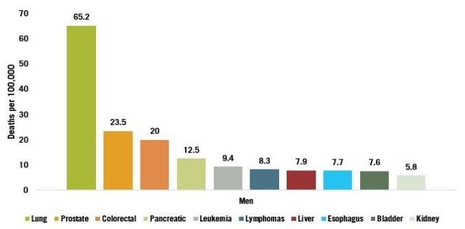 Fatal Cancers Men   The Paleo Diet