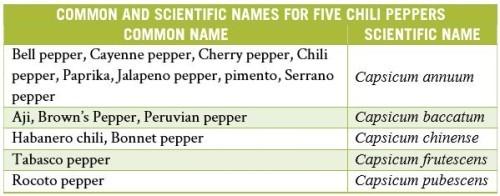 Common Scientific Names | The Paleo Diet