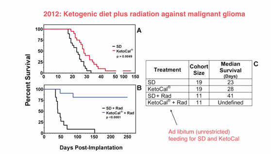 Can the Ketogenic Diet Improve Cancer Therapy? image
