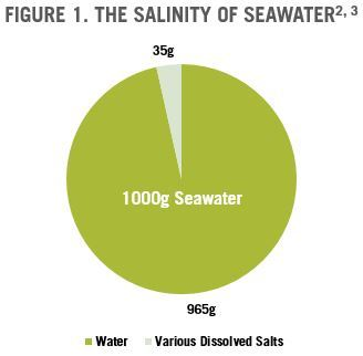 Salinity of Seawater | The Paleo Diet