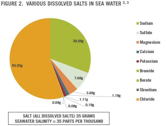Salt Dissolved | The Paleo Diet